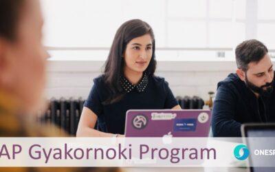 SAP Gyakornoki Program 2020 január