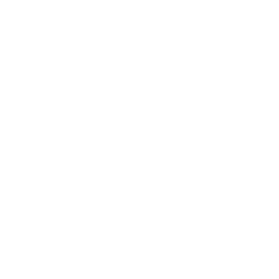 SAP outbound logistics icon